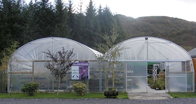 Corachie Clematis Garden Centre