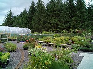 corachie clematis garden centre exterior